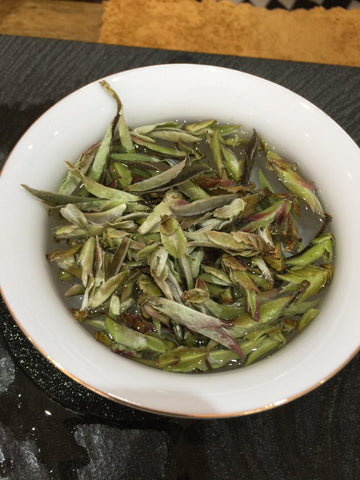 Tea buds green tea gongfu cha