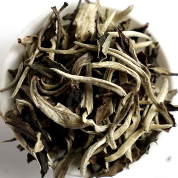 Yunnan Moonlight white tea Top Grade Yue Guang Bai Meimei Fine Teas