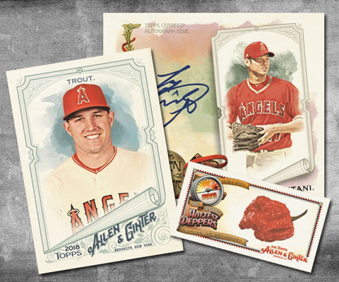 AG18- 2018 Allen and Ginter Personal Box Break- Ripped and Shipped