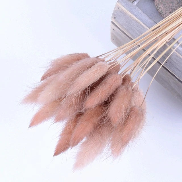 5 pcs/set Colourful Artificial Pampas Grass