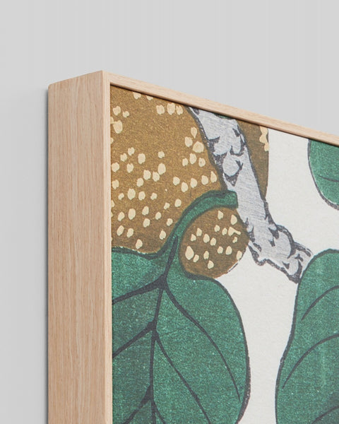 Nashi Woodblock Framed Canvas
