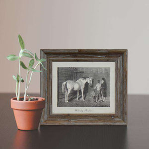 Wellesley Arabian - Framed Art Print