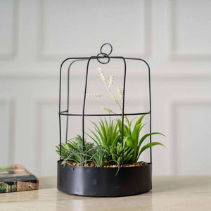 'The Cage' Faux Potted Succulents - White Fern