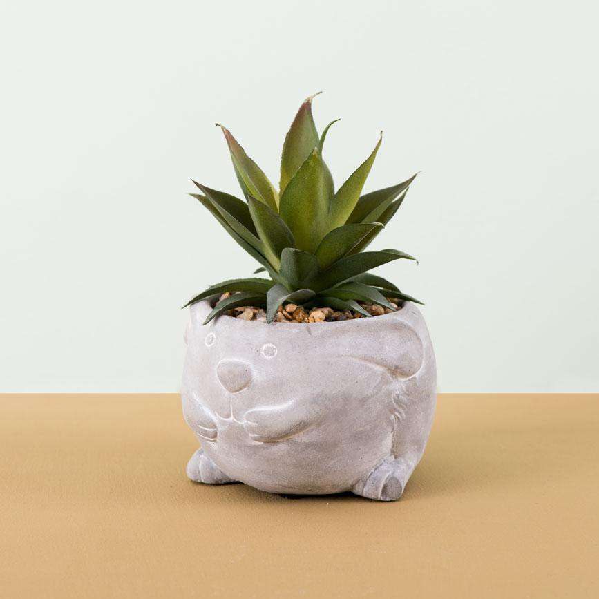 Hedgehog - Faux Potted Succulent