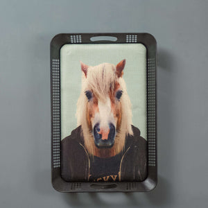 Hip Horse - Contemporary Animal Wall Art