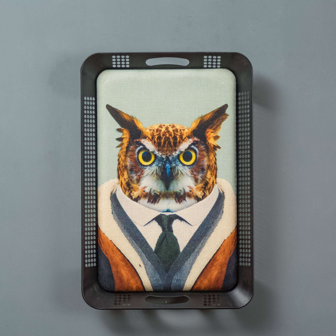 Scholarly Owl - Contemporary Animal Wall Art