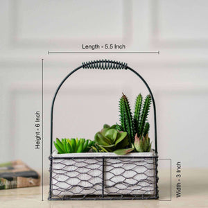 Faux Potted Succulents with Iron Caddy