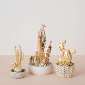 The Golden Cactus - Decorative Accent
