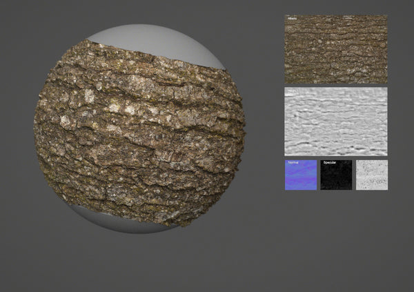 Oak bark #02 - Texturing.xyz