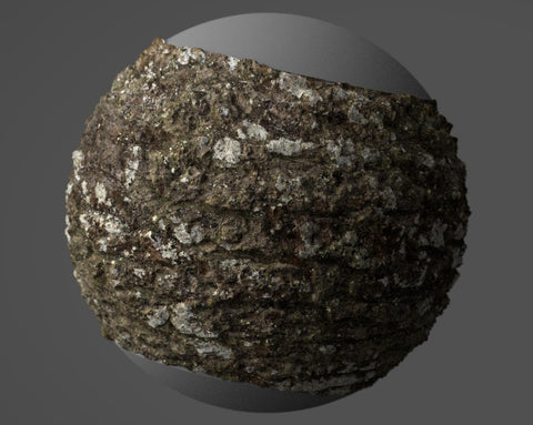 Oak bark #01 - Texturing.xyz
