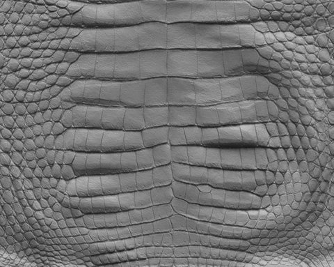 Crocodile body #02 - Texturing.xyz