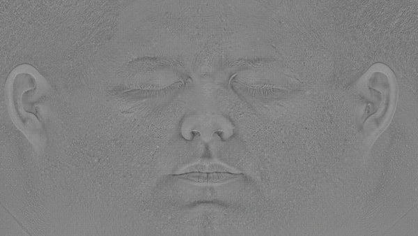 Male 30s Multichannel Face #19 - Texturing.xyz