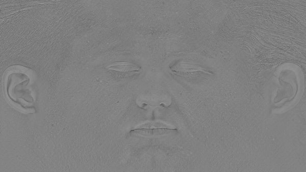 Male 30s Multichannel Face #20 - Texturing.xyz