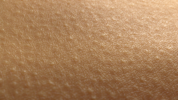 MicroSkin Shoulders #06 - Texturing.xyz