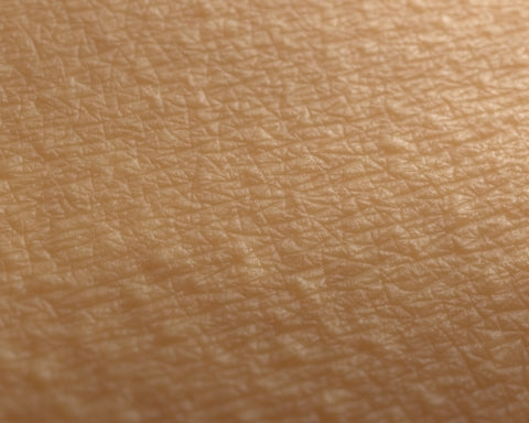 MicroSkin Shoulders #03