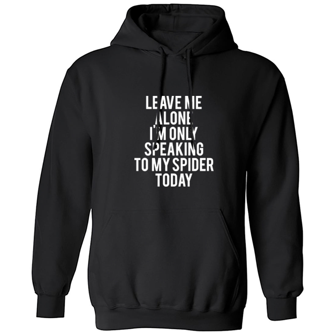 Leave Me Alone I'm Only Speaking To My Spider Today Unisex Hoodie K0952 - Illustrated Identity Ltd.