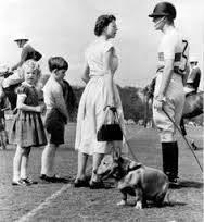 Pups for Polo @ the Royal Salute Coronation Cup