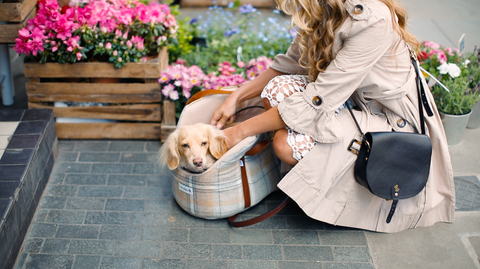 Luxury Dog Carriers by Teddy Maximus - cosy, stylish and double as a dog bed! Ideal for travelling.