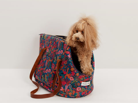 Teddy Maximus & Liberty London Collaboration