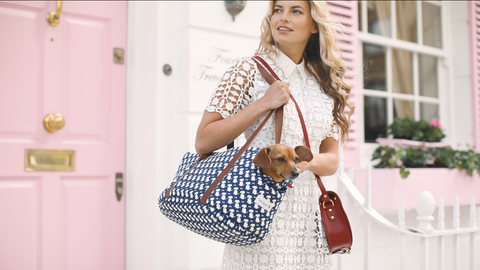 Teddy Maximus Luxury Dog Carrier - Daphne the Dachshund