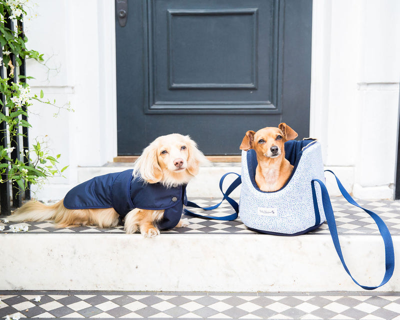Luxury Dog Coats & Dog Carrier by Teddy Maximus