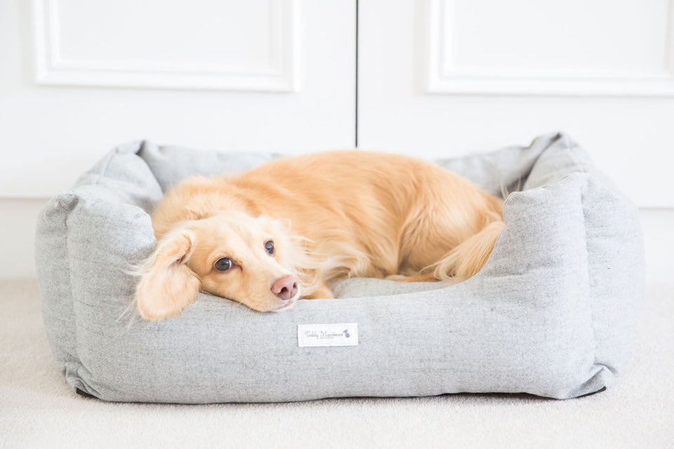 Luxury Grey Dog Bed by Teddy Maximus