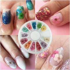 Flower Wheel Nail Art