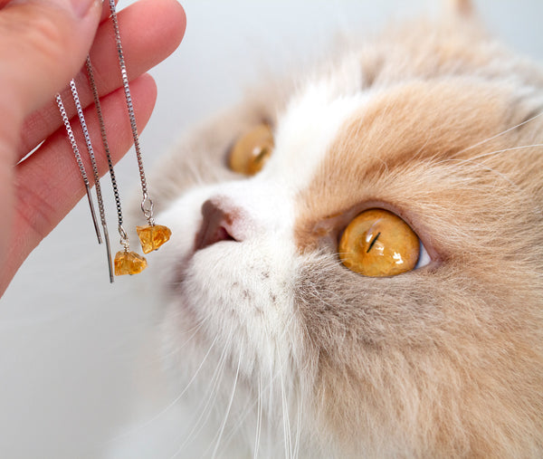 luna the cat with citrine earrings