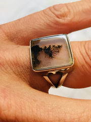 Dentritic agate in sterling silver ring