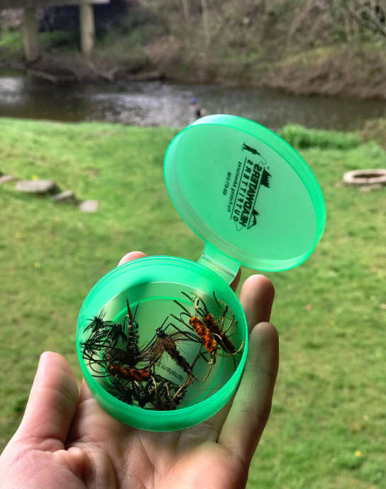 Biodegradable Green Fly Cups