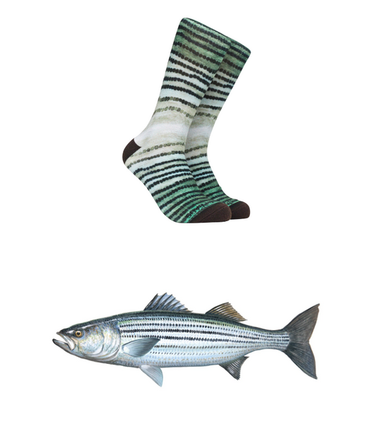 Reel Thread Socks/ Stripped Bass