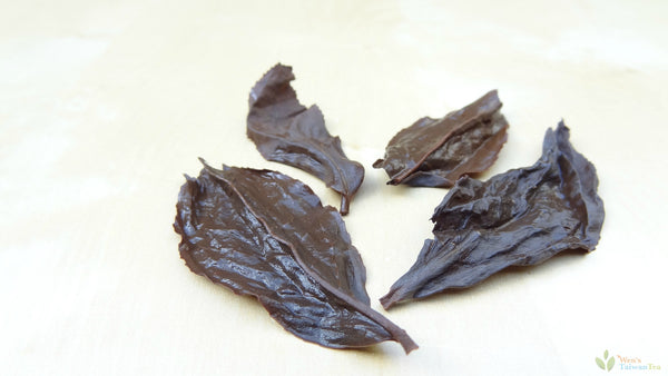Brewed leaves of honey black tea