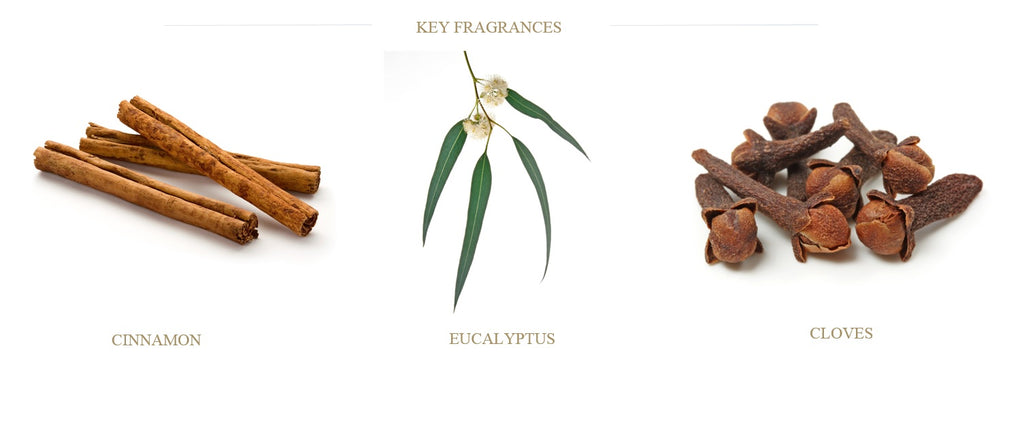 cedar-cloves-eucalyptus-cinnamon-ingredients