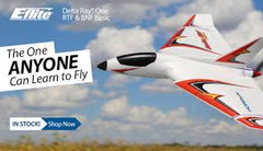 DELTA RAY ONE ULTRA-MICRO DELTA WING TRAINER