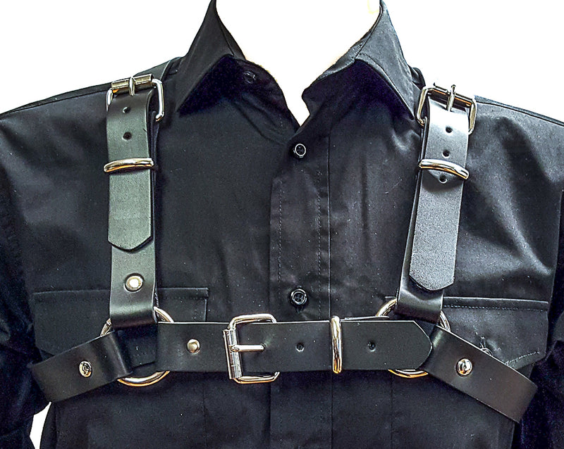 "Wide 2"" Ring 1 1/4 Leather Harness"