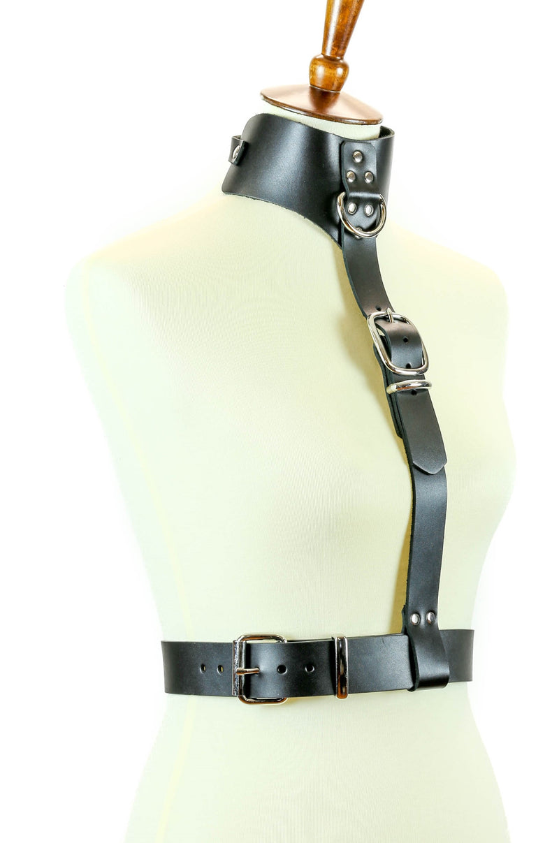 Posture Collar Buckle Harness
