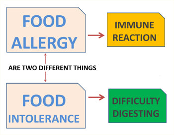 Food Health Related Problems