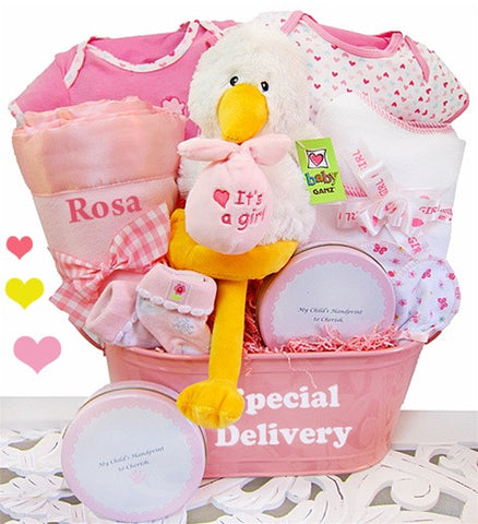 Baby Girl Special Delivery Gift