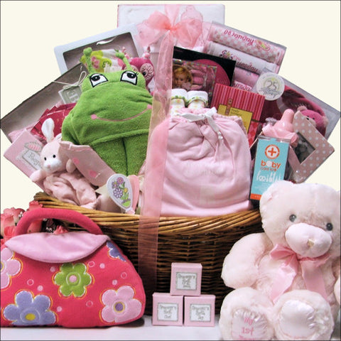 All in One Grand Baby Girl Gift Basket