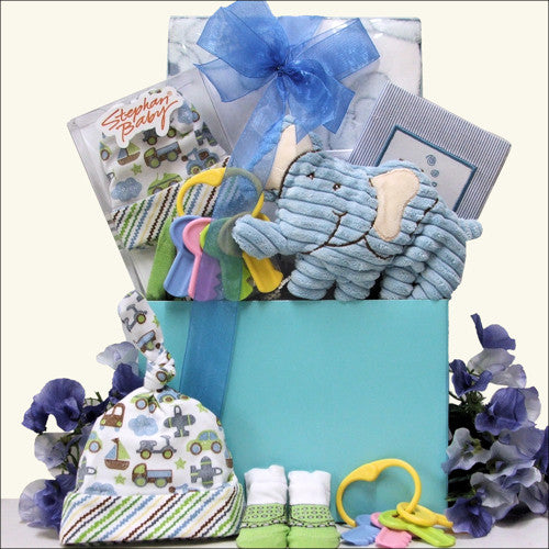 Perfect Baby Boy Gift Set