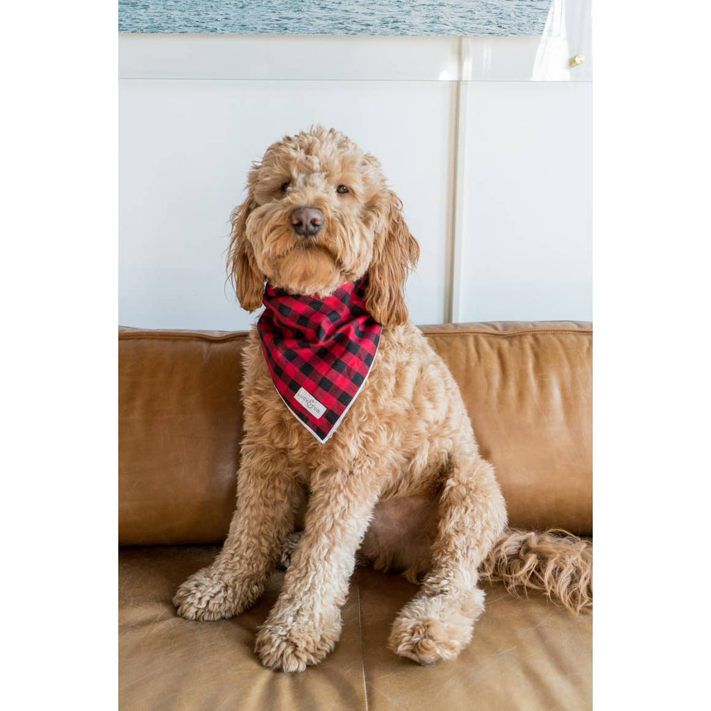 Life at The Farmhouse Buffalo Checked Dog Bandana