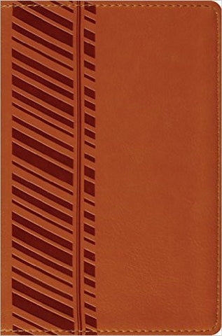 ESV Compact Bible (TruTone, Orange, Track Design)