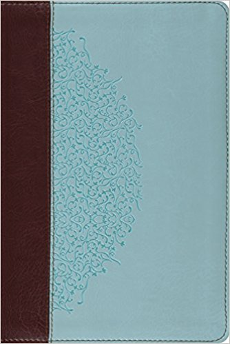 ESV Study Bible, Personal Size (Chocolate/Blue/Ivy Design)