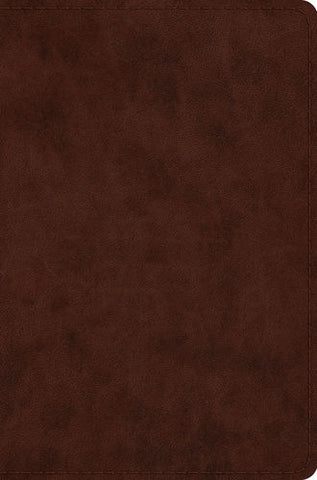 ESV Compact Bible TruTone®, Brown