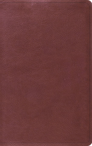 ESV Value Thinline Bible  TruTone®, Burgundy
