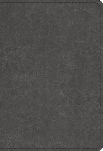 ESV Student Study Bible  TruTone®, Gray