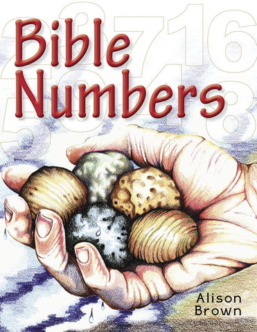 Bible Numbers: Introducing Little Children to Simple Bible Truths