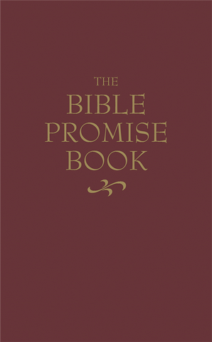 The Bible Promise Book (KJV)