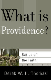 What is Providence?  (Basics of the Faith Series)