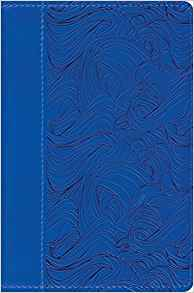ESV Compact Bible: TruTone, Deep Blue, Waves Design